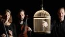 Devils Violin Blackcage Web Size