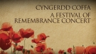 Festival Of Remembrance Page