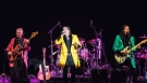 Showaddywaddy Live 14